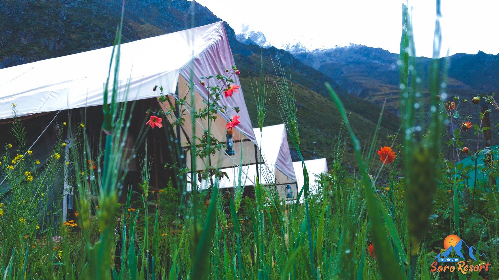 Himalayan Saro Resort Badrinath